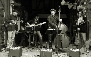 The Stringband Ramblers (Folk & Blues)